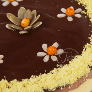 Tort raw portocale 2